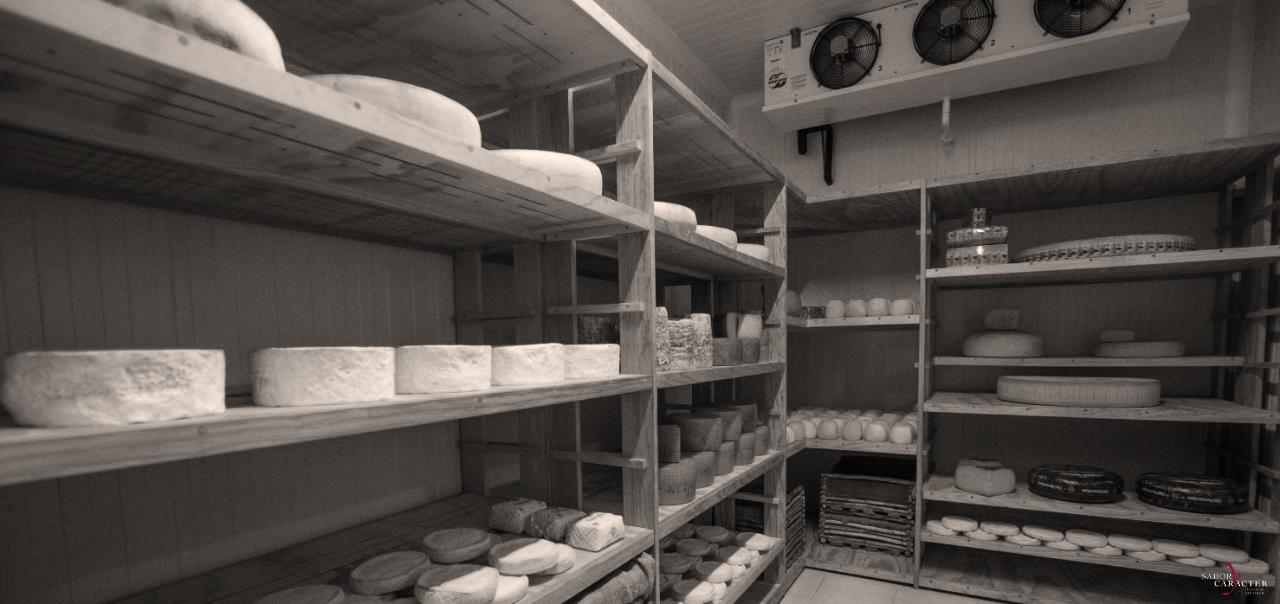 sabor-y-caracter-gastronomia-gourmet-profesionales-a-y-b-quesos-sourcing-calidad-asesoría-empaque-transporte-tiempo-de-entrega